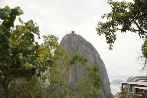 SICOT-Rio-2014_15klein